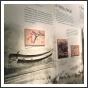 A zászlóalj fegyverei a kiállításon - fotó: budaihonvedek.hu